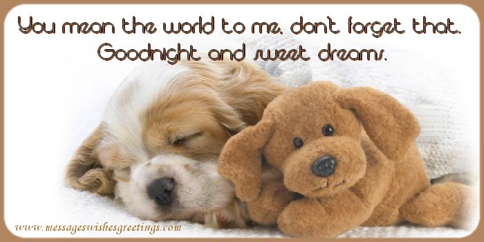 Good night You mean the world to me, don't forget that. Goodnight and sweet dreams.