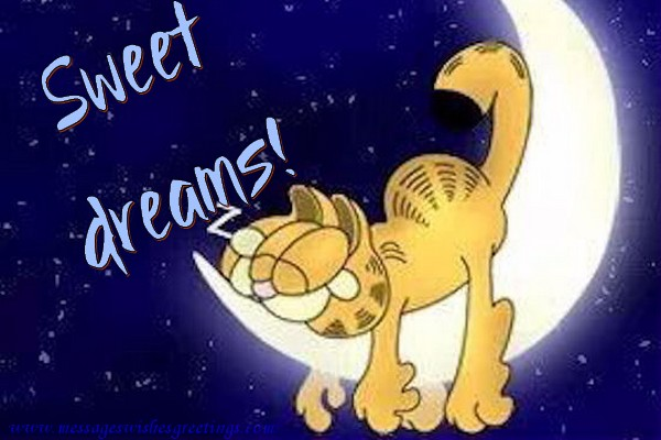 Good Night Sweet Dreams!