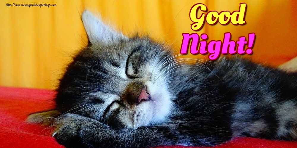 Greetings Cards for Good night - Good Night!