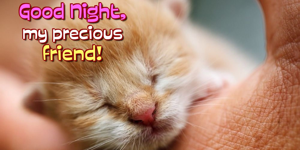 Greetings Cards for Good night - Good Night, my precious friend!