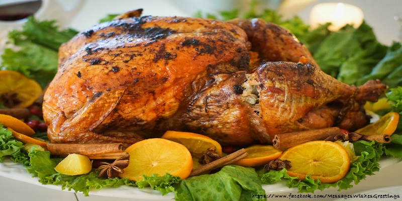 Greetings Cards Thanksgiving - Thanksgiving turkey