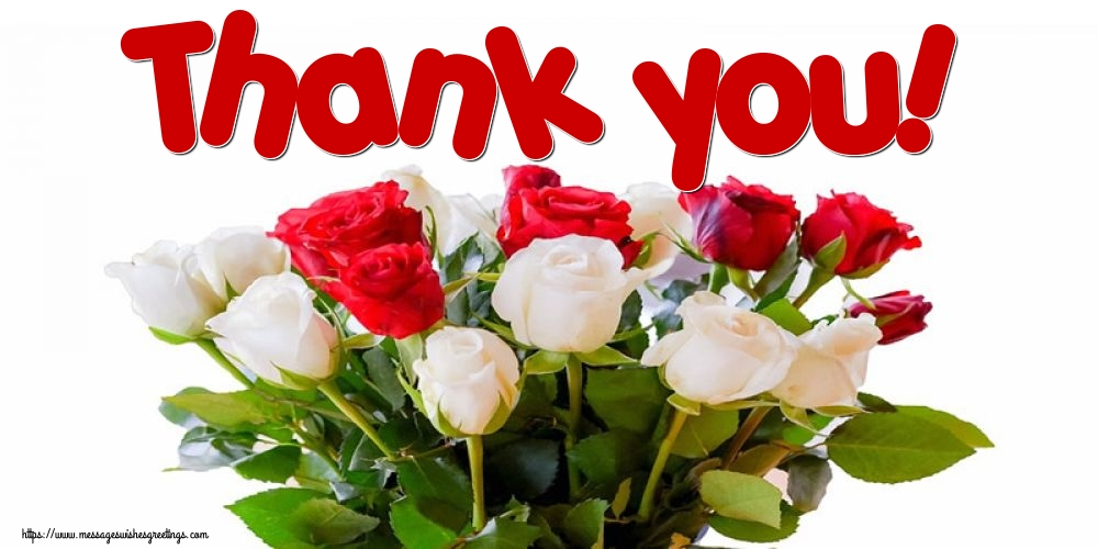 Greetings Cards Thank you - Thank you!