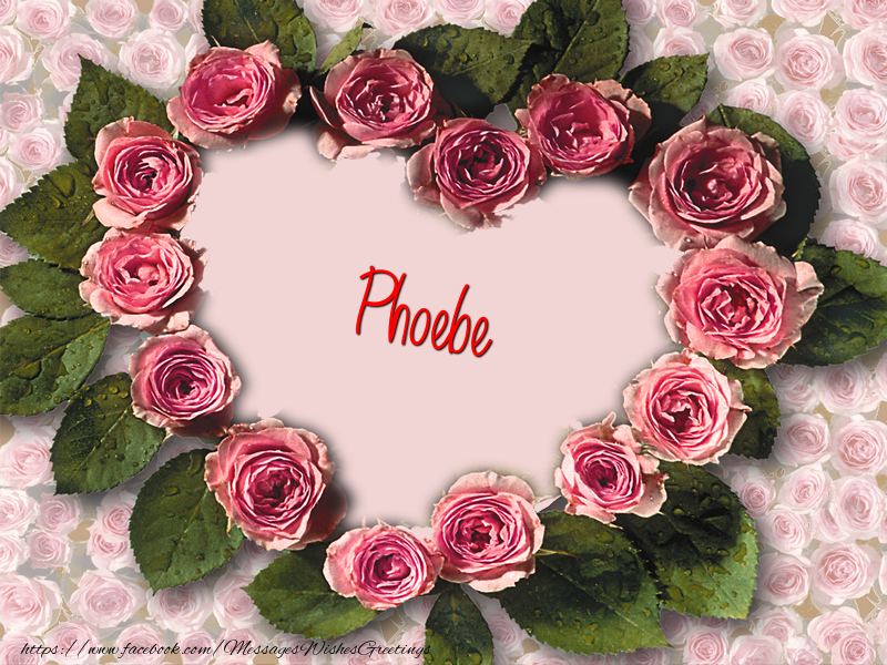 Greetings Cards for Love - Phoebe