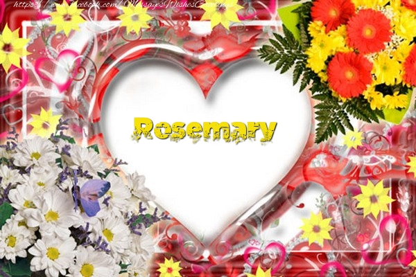 Greetings Cards for Love - Rosemary